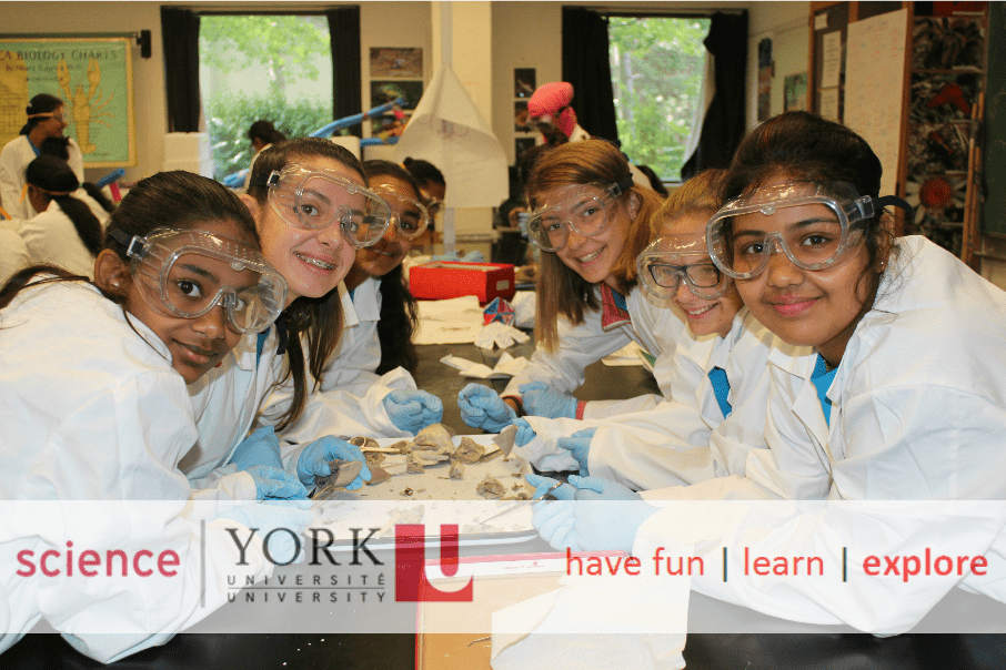 Young female students dressed in lab coats and safety googles doing dissecting experiment in the classroom.
