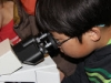 York Science Camp #10